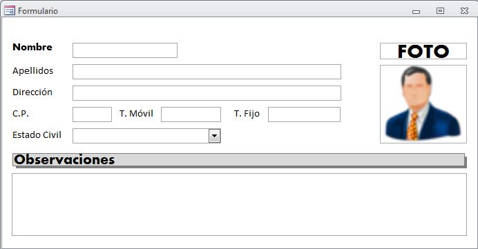 Microsoft Access - utiliza el mismo tipo de letra